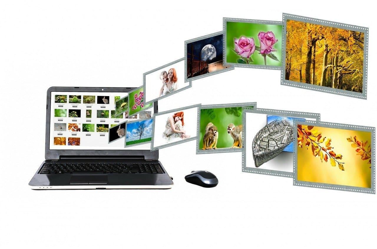 online kereskedelem | DUOL