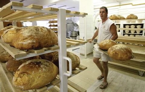A mini pékség üzleti terve - Képződés